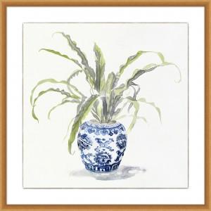 Square Ginger Urn Plant 1