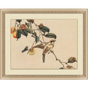 Vintage Bird Study 1